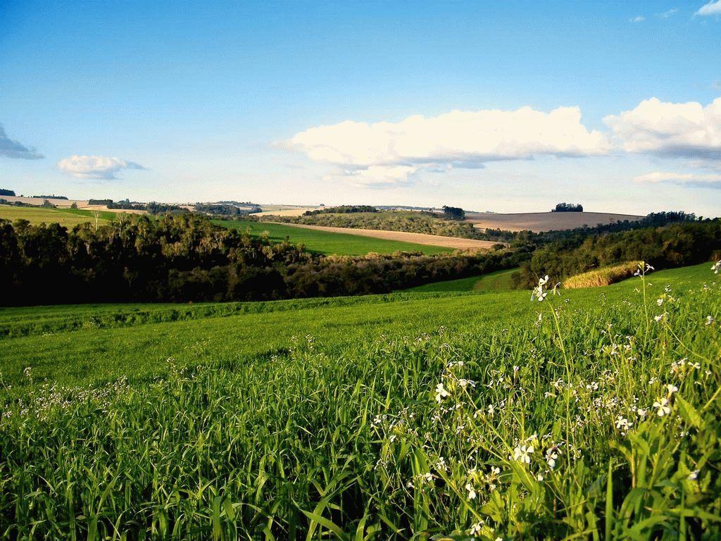 Как происходит процедура отказа от права собственности на земельный участок в 2019 году